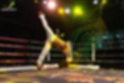 Show de capoeira, Bresilevents
