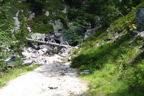 La Pousse de Riz - Blog Philo - Bouddhisme - Octuple Sentier - Intention Juste