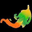 BRESILevents,spectacle brésilien chorégraphié, danseuses brésiliennes, capoeira, BORDEAUX, sud-ouest,danseuses bresiliennes, capoeira