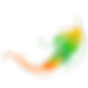 BRESILevents,spectacle brésilien chorégraphié, danseuses brésiliennes, capoeira, BORDEAUX, sud-ouest