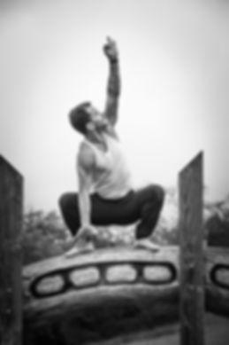YogaGinga,William Peltin, professeur de yoga, bordeaux, cours de yoga, entreprise, particulier, stage de yoga