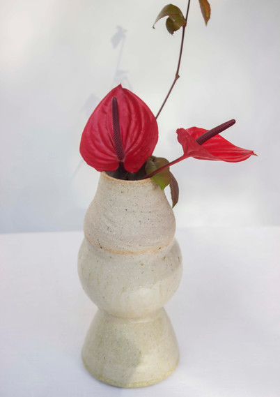 little vases with red anthurium
