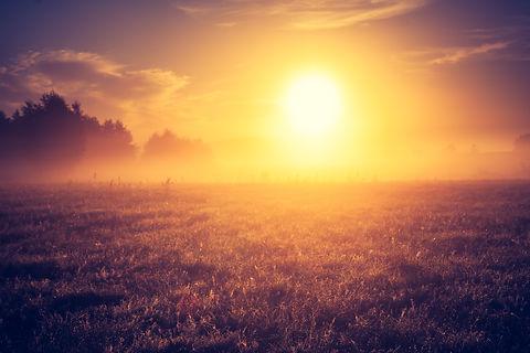 foggy morning on meadow. sunrise landsca