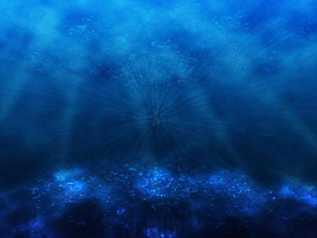深海蘊藏著治癒疾病的良藥