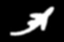 white plane logo.png