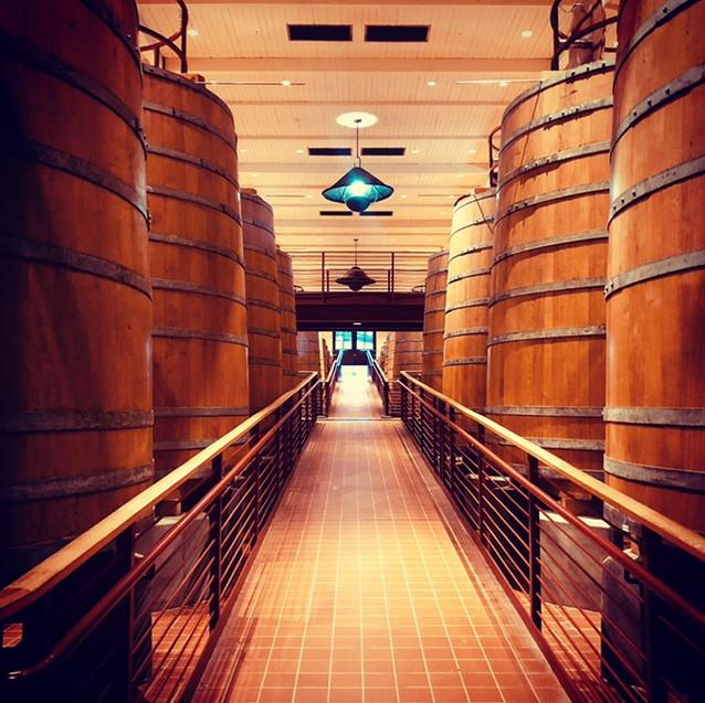 Robert Mondavi Winery, Napa Valley