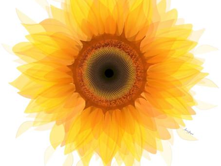 Sunflower Burst - Earth Day!
