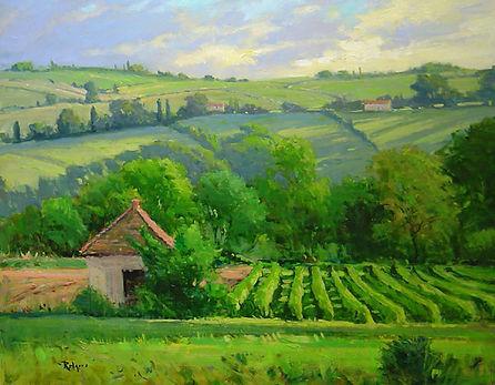 Morning Vineyards, Provence-24X30.jpg