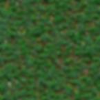 grass_advanced2.png