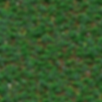 grass_advanced2.png