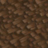 bark2_3.png