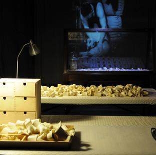 Bone Library (Fragment) 2013