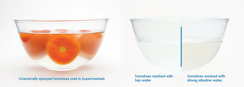 Ionic-H2O_Tomato-Test-B&A.jpg