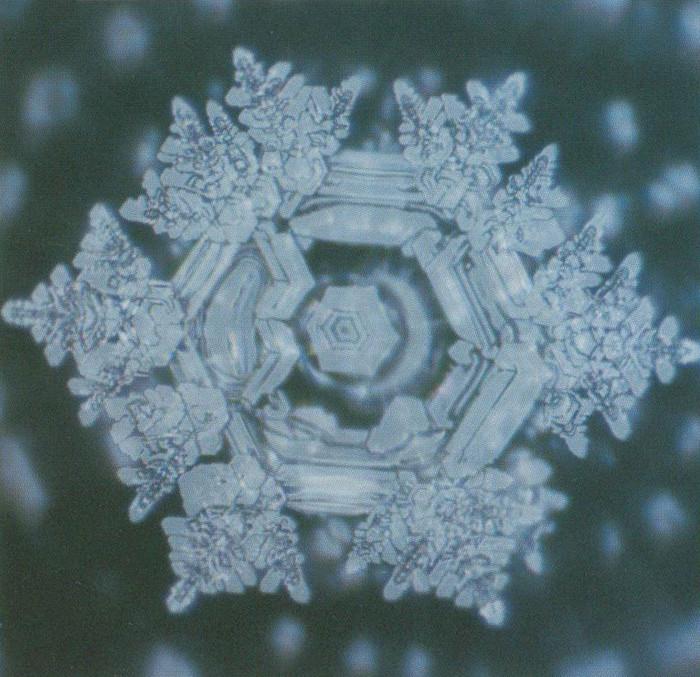 Hexagonally Structured Water