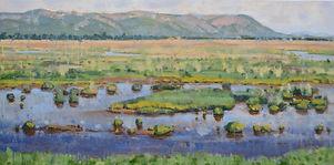 restored wetland.jpg