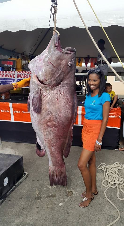 warsaw grouper.jpg