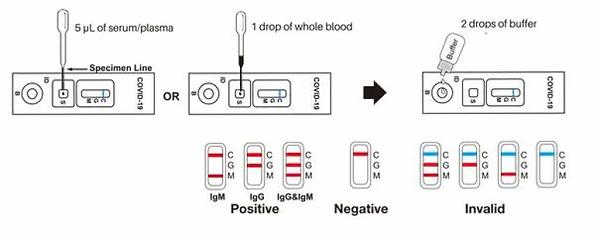 healgen-rapid-blood-test.webp