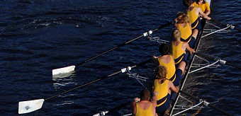Which activity carries the greatest risk of catching weil's disease? Rowing?