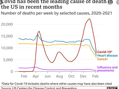 A closer look at U.S. deaths due to COVID-19