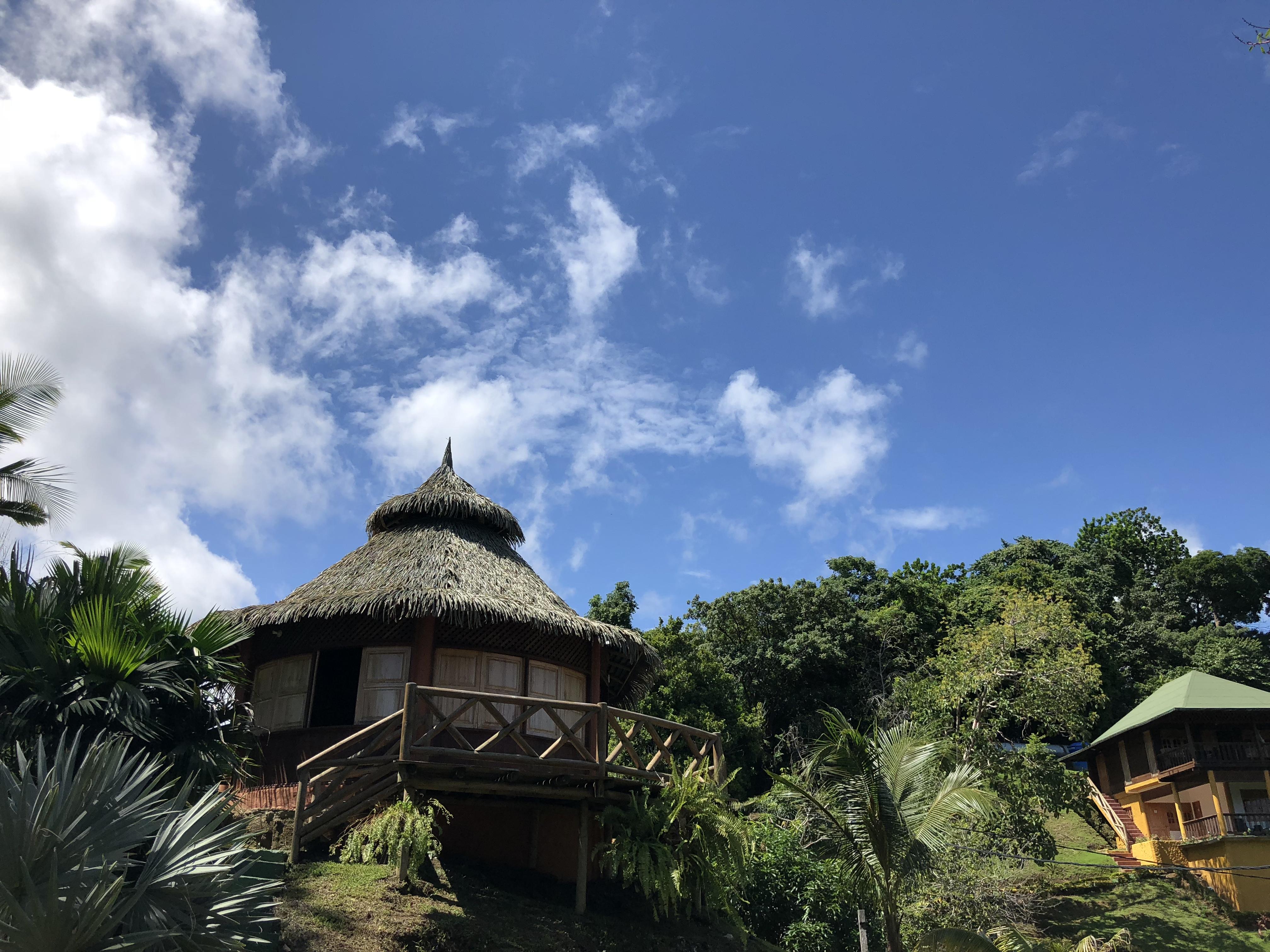 Trigana, Chocó