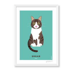PET portraits-01.png