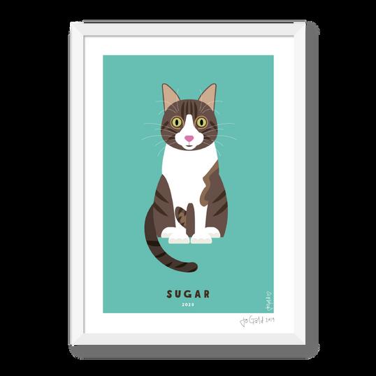 PET portraits-01.png
