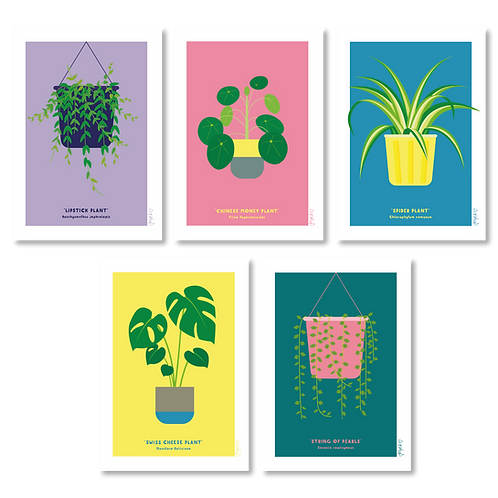 PLANT CARDS (PACK OF 5)
