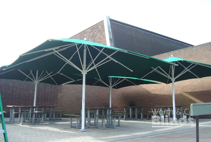 School Giant Parasols