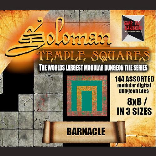 Soloman Temple Squares - BARNACLE