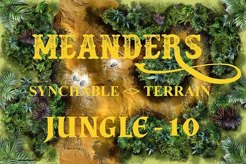 Jungle 10