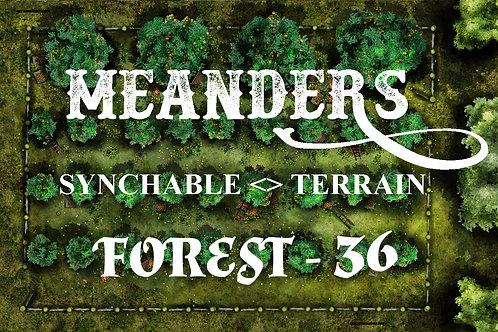 Forest 36 - EDGER