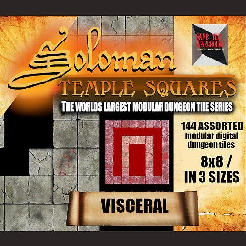Soloman Temple Squares - VISCERAL