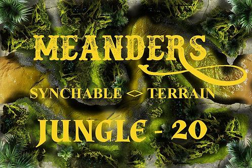 Jungle 20