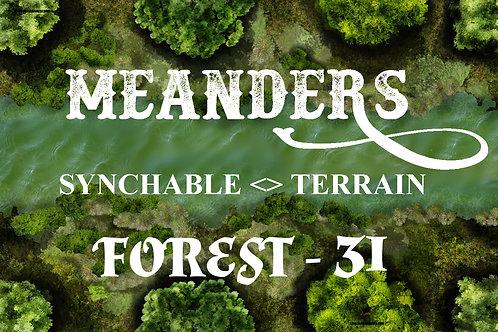 Forest31 - EDGER