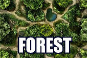 #rpg #maps #rpgmaps #forest #tree #woods #ancient #woodland #path #road #stump #log #dirt #field #clearing #bush #grass #cave #tollbooth #orchard #chasm #river #camp #gatehouse #cemetery #grove #pond #wild #wilderness