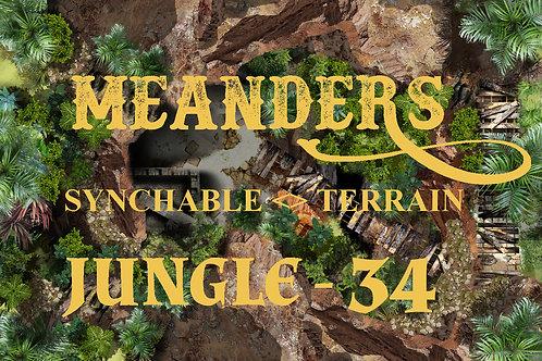 Jungle 34