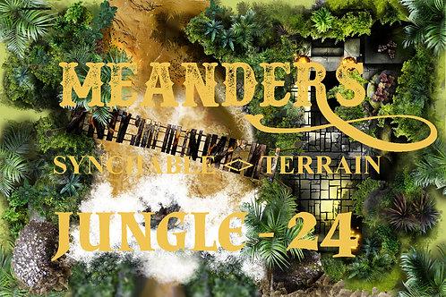 Jungle 24