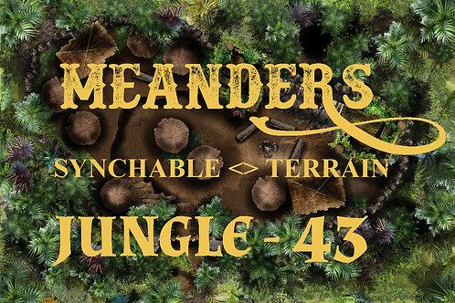 Jungle 43