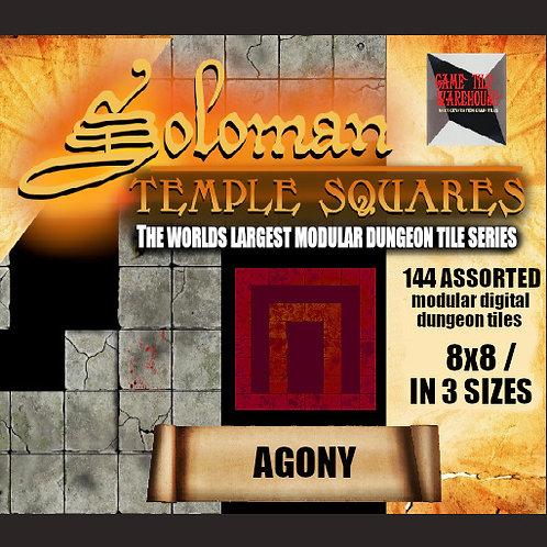 Soloman Temple Squares - AGONY