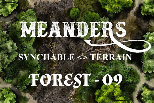 Forest 09