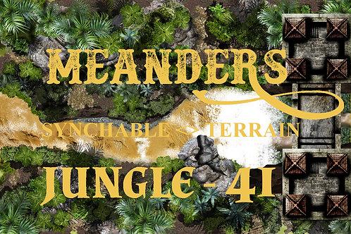Jungle 41