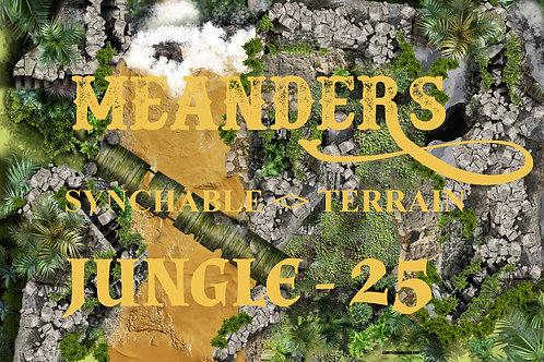 Jungle 25