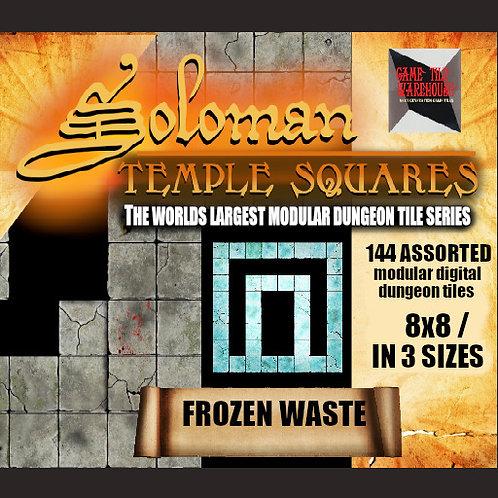 Soloman Temple Squares - FROZEN WASTE