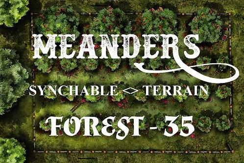 Forest 35 - EDGER