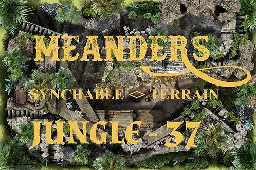 Jungle 37