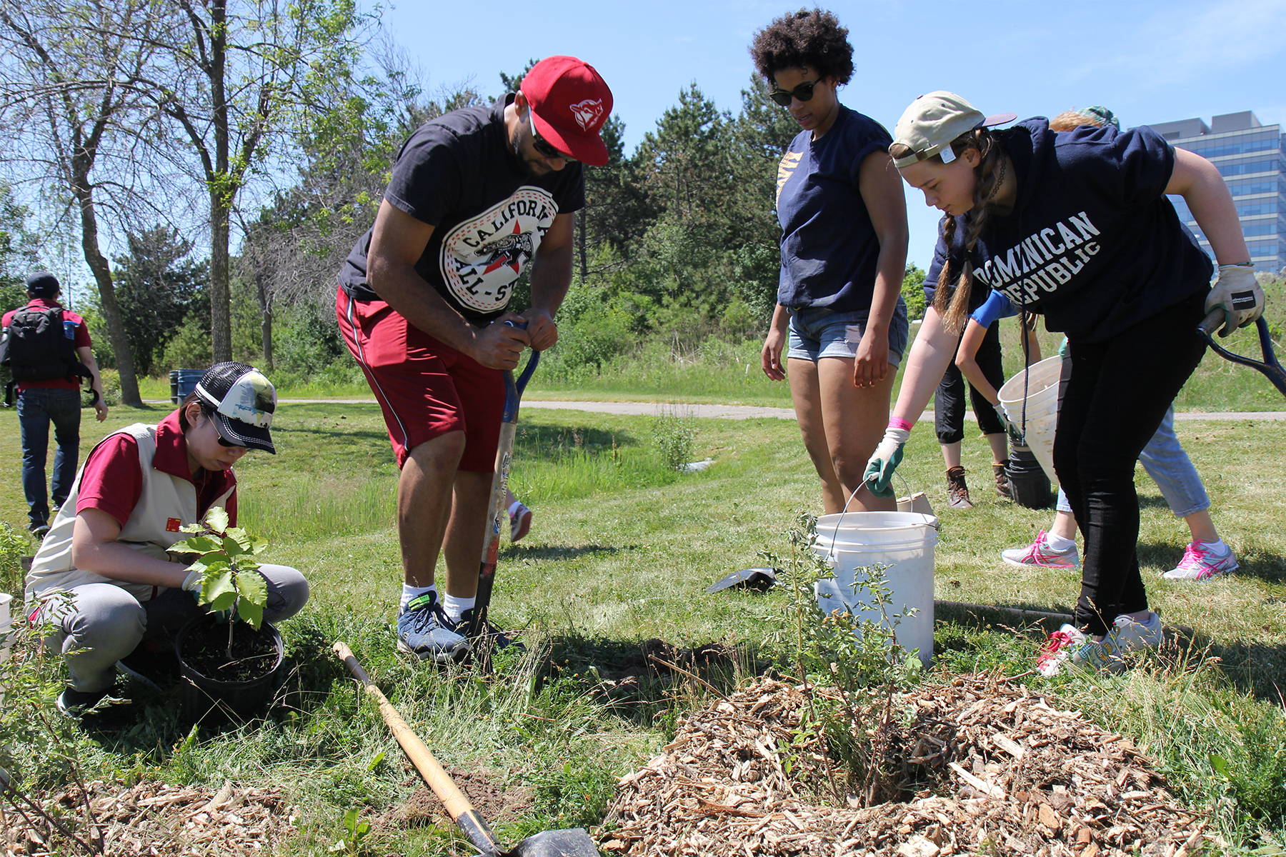 Interfaith Youth Tree Planting