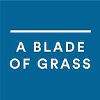 Tara Rynders Awarded a Blade of Grass Fellowship