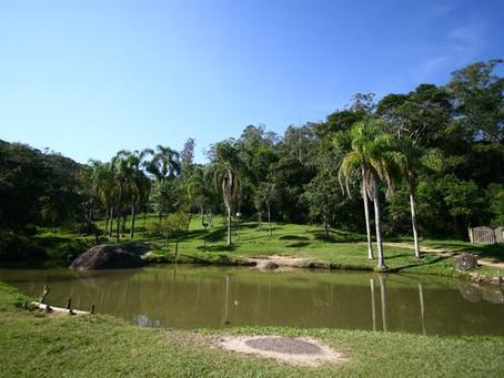 Luzia da Silva Itabaiana, Rua - Jardim Itapeva