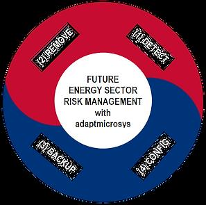 ams_Risk_Management_2_edited.png