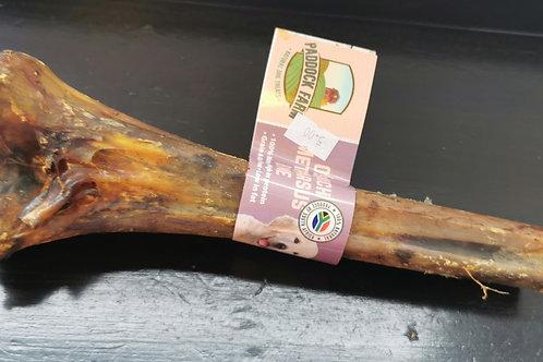 Ostrich Meatarsus Bone